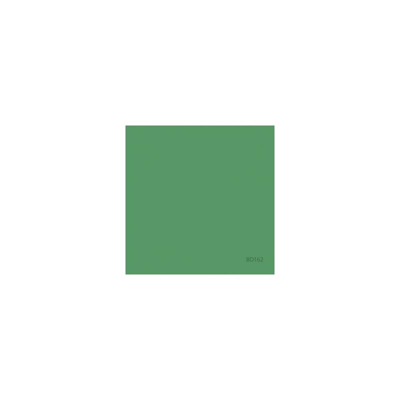 ROULEAU FOND PAPIER 1.36X11M VERT BD